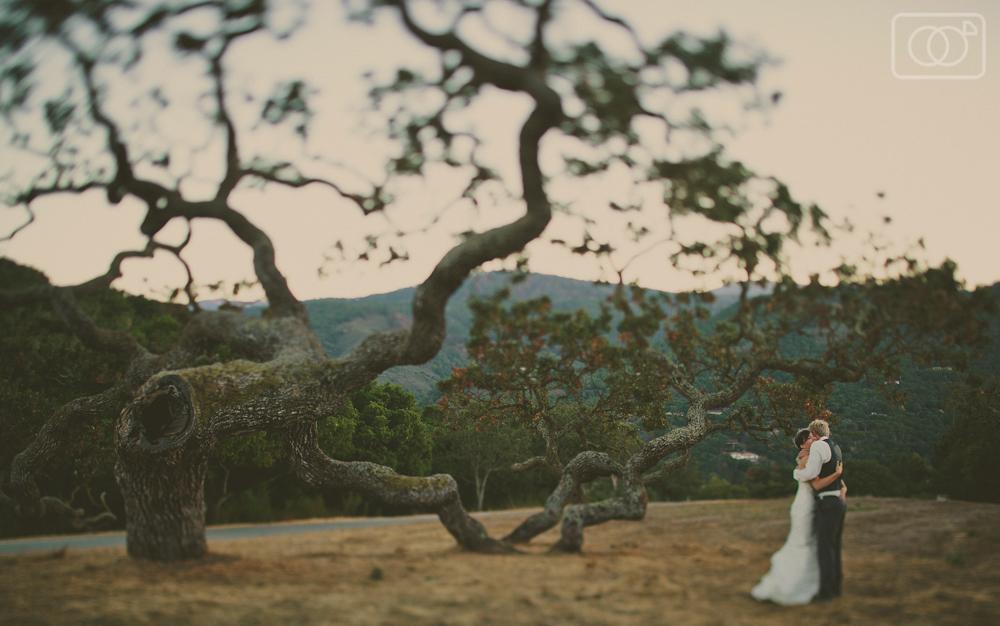 Ryan and Caitlin: Wedding, Carmel Valley, Holman Ranch