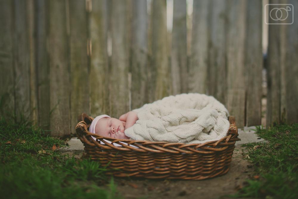 Evelyn Joan - Newborn Photography, Camarillo, CA